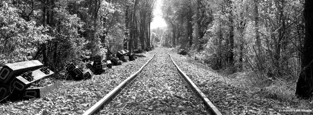 Bild: Leere Bahngleise